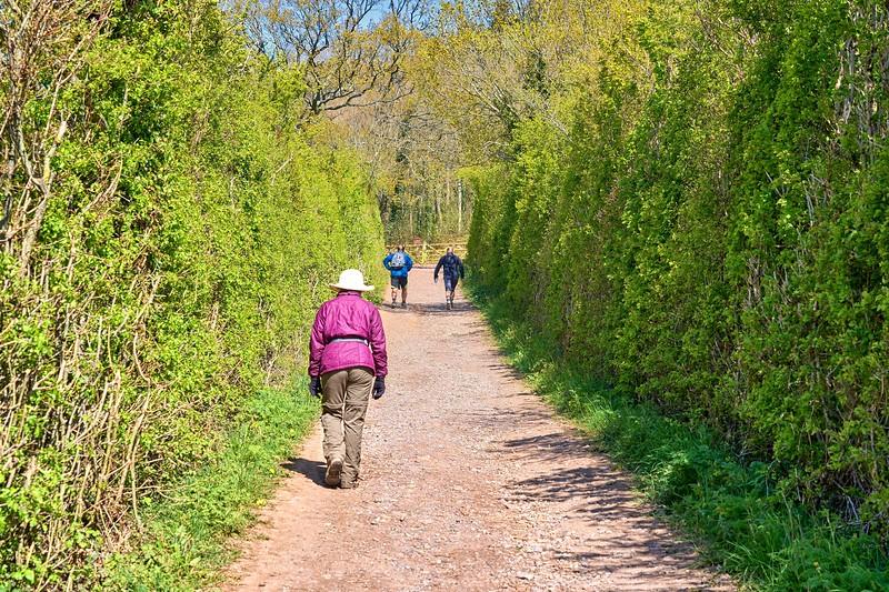 Skirrid Walk