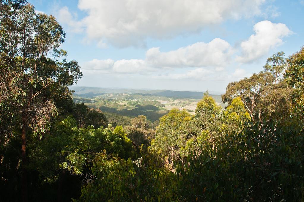 At Mount Lofty