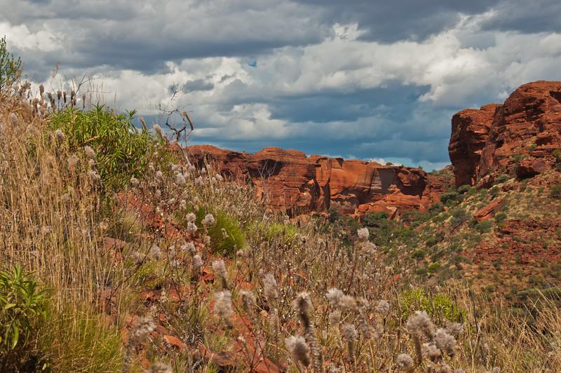 To Uluru via King's Canyon (54 of 71)