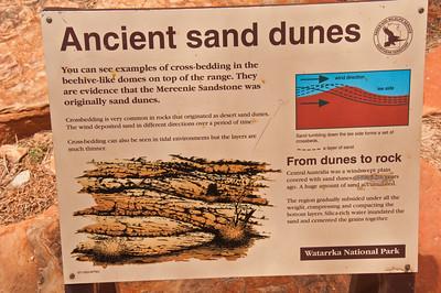 Dune bedding