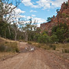 Warren Gorge (2 of 9)