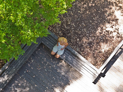 Chris from above