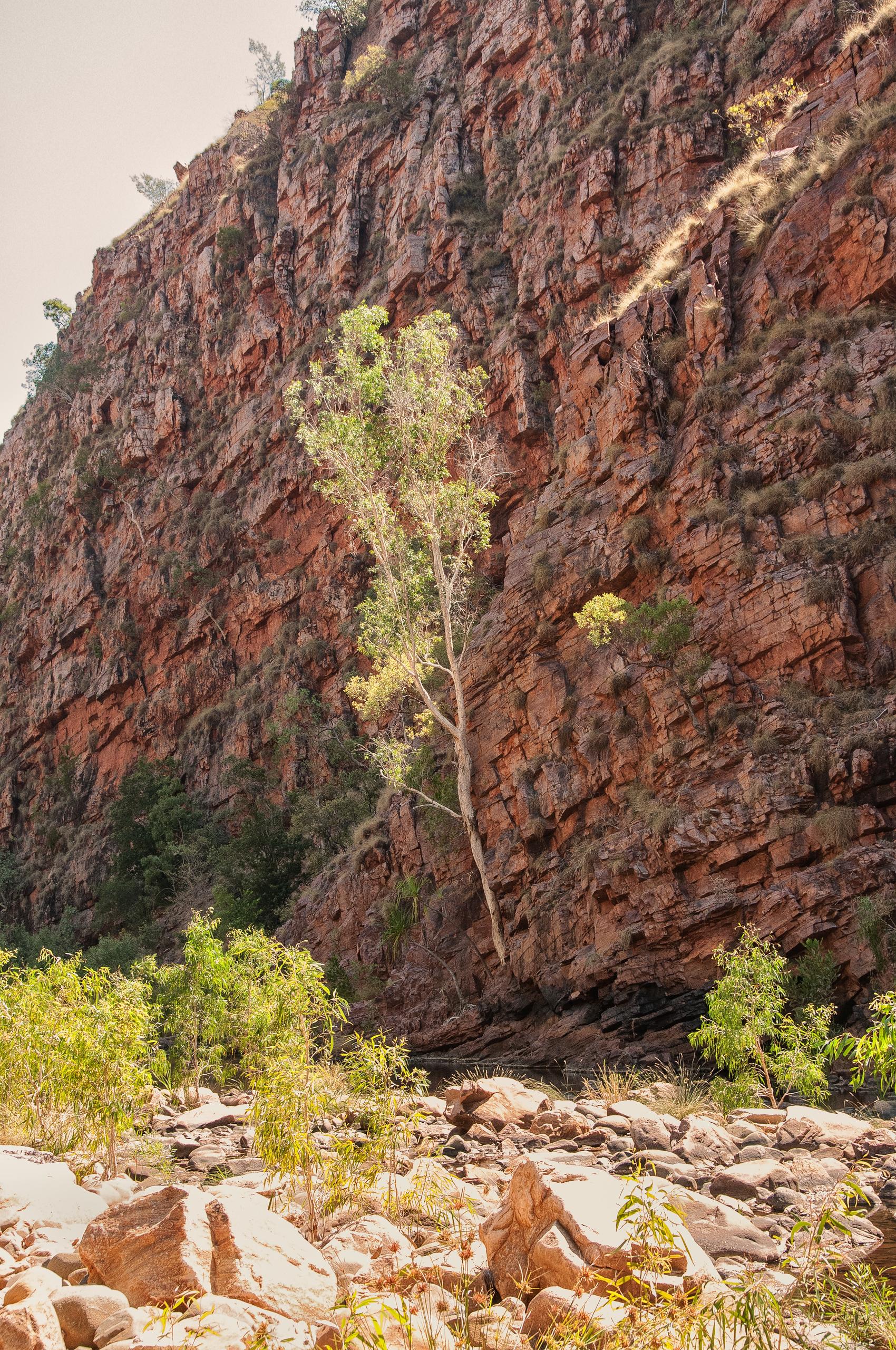 Moonshine Gorge