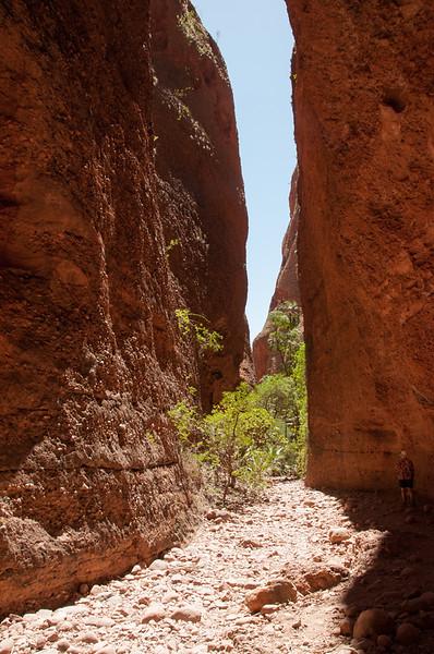 Echidna chasm