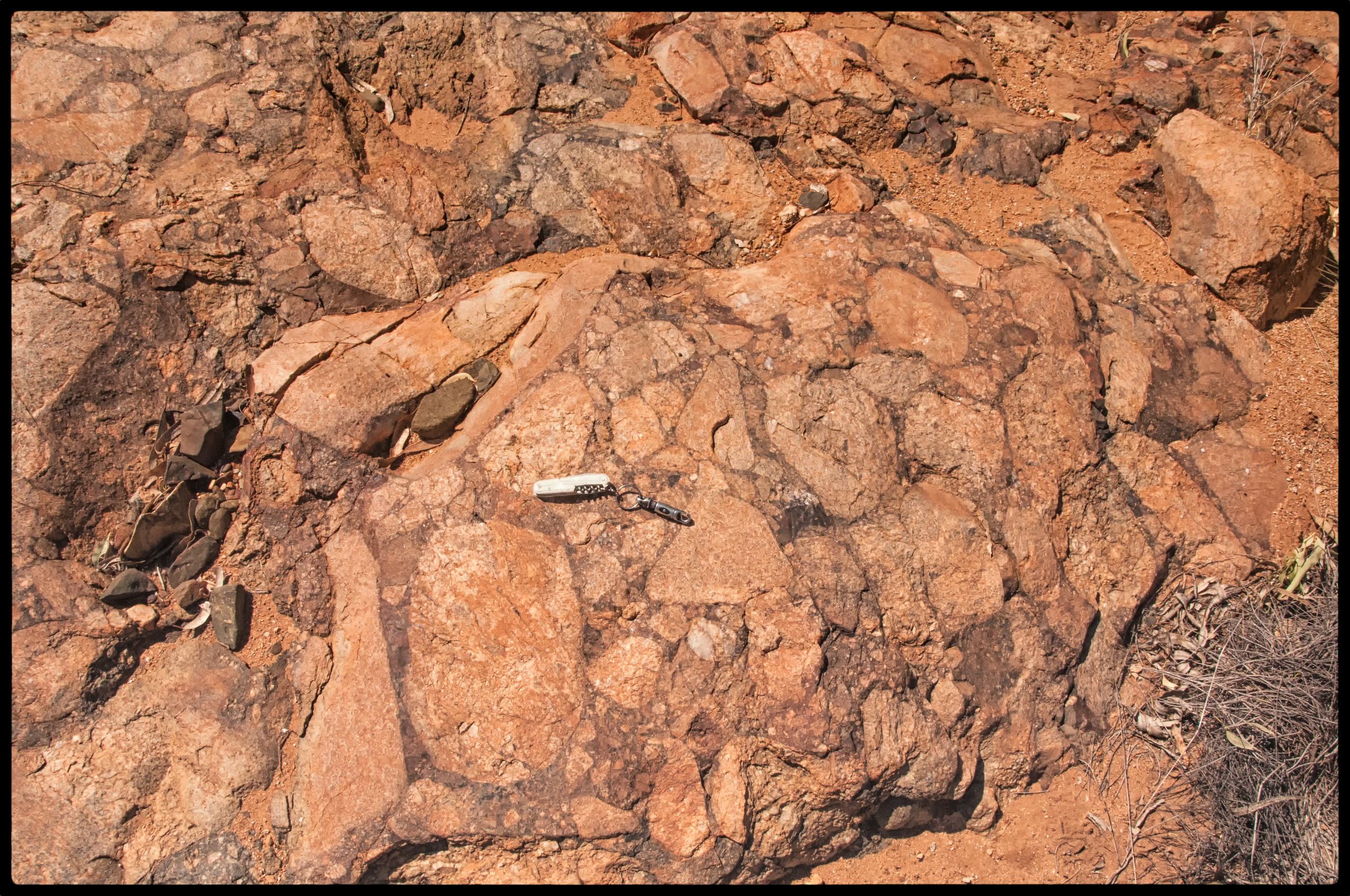 Unusual conglomerate