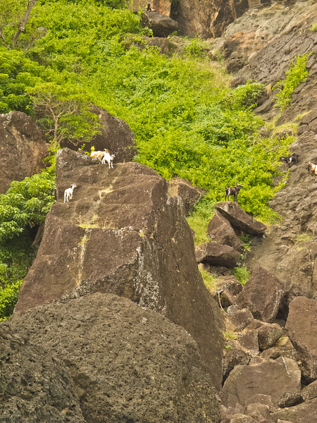 Sawailau Cave Trip (16 of 22)