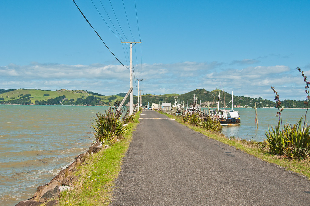 Coromandel to Fletcher's Bay (3 of 37)