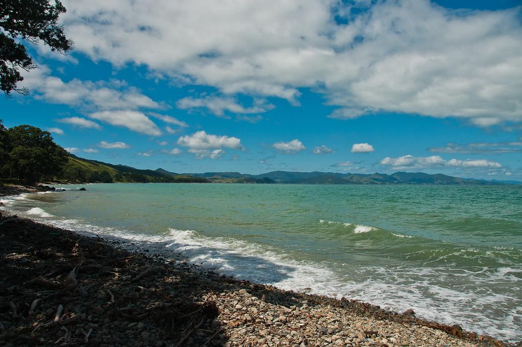 Coromandel to Fletcher's Bay (22 of 37)