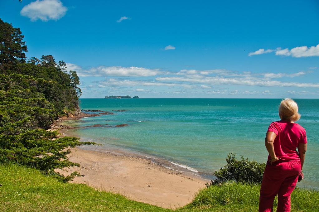 Coromandel to Fletcher's Bay (15 of 37)