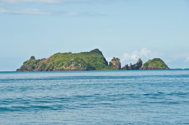 Coromandel to Opiko Bay (28 of 33)