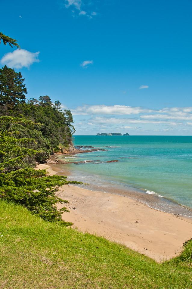 Coromandel to Fletcher's Bay (14 of 37)