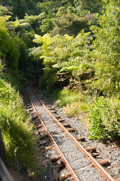 Driving Creek Railway (22 of 38)