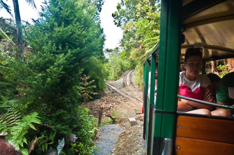 Driving Creek Railway (15 of 38)
