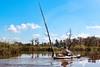 Port Wentworth_Kayaking_7821