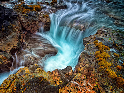 """Reef Puka"" Shot near NELHA on the Kona coast of the Big Island of Hawaii."