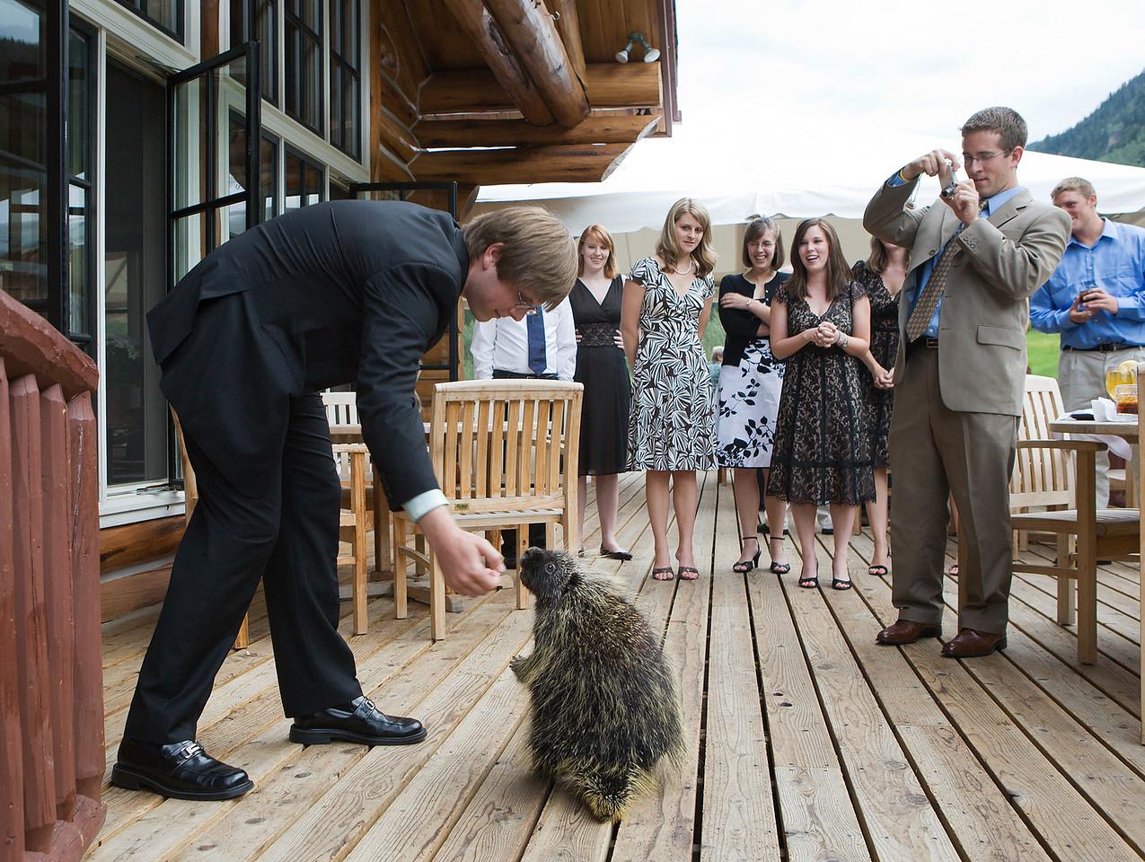 Surprise guest at a Colorado mountain wedding