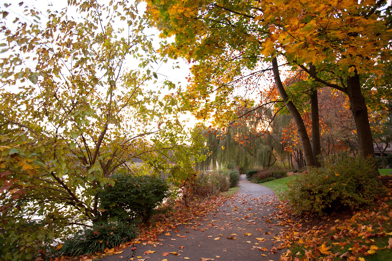 Lake Newport trail in autumn