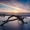116/366 Deadwood Beach on Jekyll Island, GA