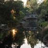 309/366 Sunset in the Arboretum