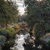 299/366 Arboretum
