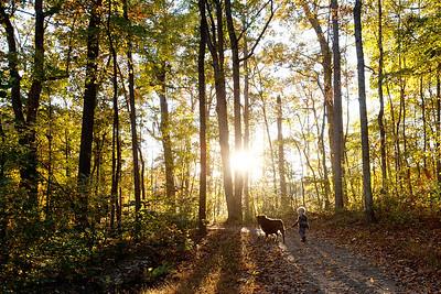Trail along Lake Audubon