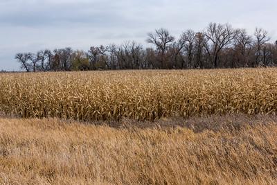 Manitoba late autumn