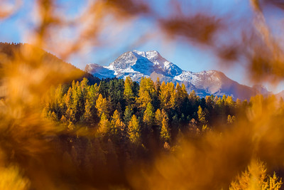 Commence of Autumn / St-Moritz, Switzerland