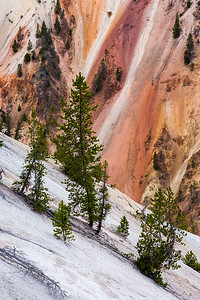 Artist point / Yellowstone, USA