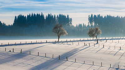 Winter landscape / Hüfingen, Germany