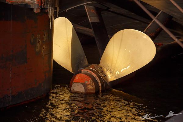 Starboard propeller and rudder detail - American Century