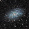 Messier 33 Galaxy in Triangulum