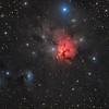 NGC 1579 in Perseus