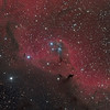 Part of Sharpless 2-264 in Orion - HaLRGB