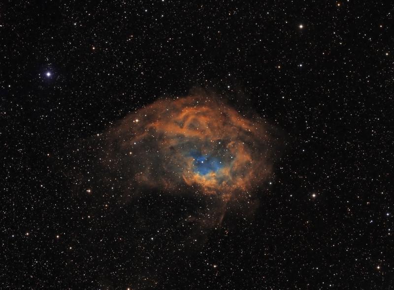 Sharpless 2-261 (Lower's Nebula) in Orion - SHO (Hubble Palette)