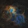 Sharpless 2-132: the Lion Nebula in Cepheus - a two-panel mosaic in 'Hubble Palette' (SHO)
