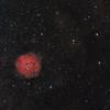 Sharpless 2-170 in Cassiopeia - HaOIII_RGB