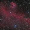 The Seagull Nebula (IC 2177) in LRGB