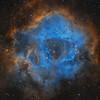 Rosette Nebula - SHO from DSW