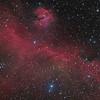 The Seagull Nebula (IC 2177) in HaOIIILRGB