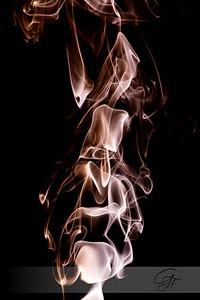2008-10-27-IMG_0252