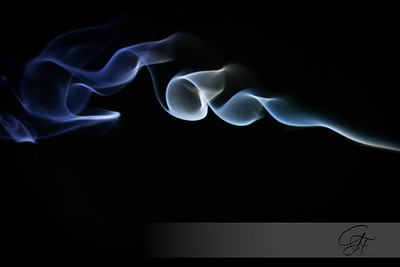 2008-10-27-IMG_0405