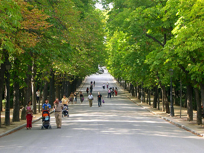 Paseo de Equador through the middle of El Parque del Buen Retiro