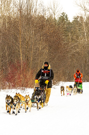 Wolftrack Classic Sled Dog Race