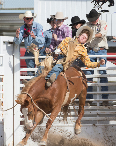 012614_Homestead_Rodeo