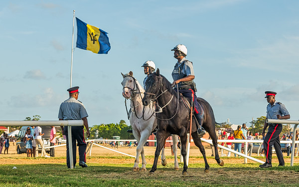 Sandy Lane Gold Cup 2019