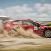 Bird & Morton