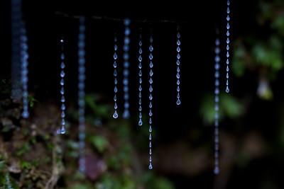 Glow-worm / Titiwai silk threads