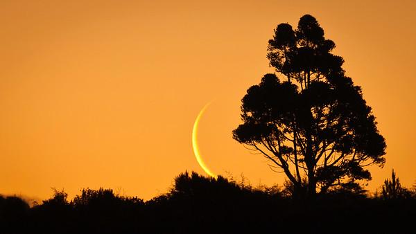 Beautiful moon set