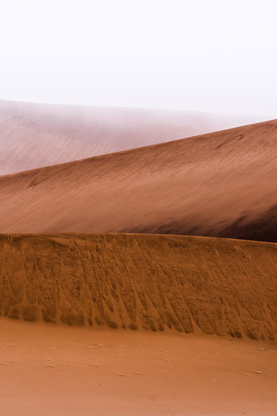 Fog from the Atlantic coast rolls over the dunes of the Namib desert each morning. The ephemeral moisture sustains many hardy species of wildlife in this desolate landscape.