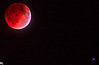 blood_moon-147-Edit
